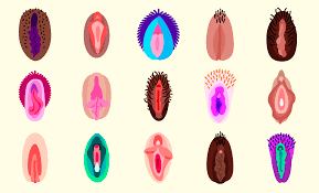 These are the very best vagina emoji for sexting The Verge