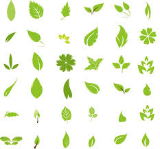 All Free Download Vector Design Free Graphic Design Green Leaf Design Elements Free