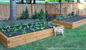elevated garden beds. Homely Idea Raised Garden 42 DIY Bed Plans Ideas You Can Build In A Day Elevated Beds