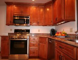 Kitchen Cabinet Wood Choices Kitchen Kitchen Cabinet Discounts Entry Level Priced Rta Builder