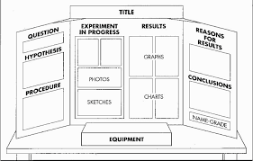 Science Fair Projects Layout Science Fair Project Template Top 12 Fantastic Experience