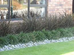 Small Picture Phormium Elfin Gardening Made Easy Providing Garden Design