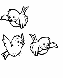 Small Picture Free Coloring Page Bird
