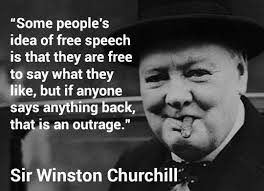Freedom Of Speech Quotes Classy FUNNY QUOTES ABOUT FREEDOM OF SPEECH Image Quotes At Relatably