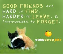 Friendly Quotes Delectable 48 Unique Collection Of Friendship Quotes StyleGerms
