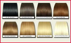 Black Hair Dye Chart 52 Luxury Keune Color Chart Home Furniture