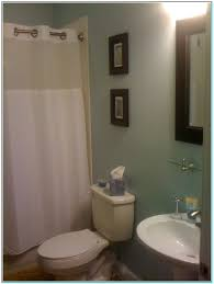 bathroom with no windows best color for small bathroom no window