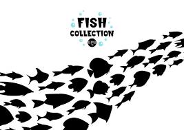 魚 に関するベクター画像写真素材psdファイル 無料ダウンロード
