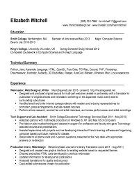 Sample Resume For Web Designer Extraordinary Webmaster And Web Designer Resume Sample Httpresumesdesign