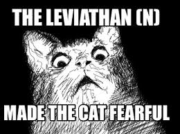 Meme Maker - The leviathan (n) Made the cat fearful Meme Maker! via Relatably.com