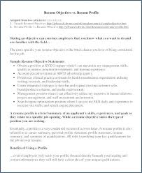 40 Unique Retail Resume Summary Ideas Resume Template Resume Classy Resume Summary Examples For Retail