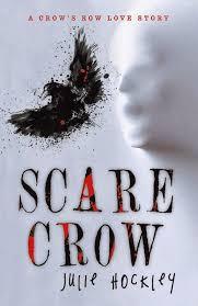 me myself books scare crow by julie hockley
