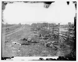 civil war connections connecting you to the past one blog post antietam md confederate dead by a fence on the hagerstown road photographed by