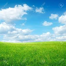 green grass field animated. Field With Green Grass And Clouds On Blue Sky Stock Photo - 8879206 Animated E