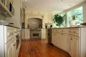 Kitchen Remodeling Alexandria Va Decor Painting Impressive Design