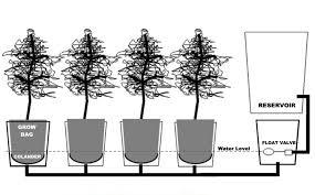 build your own alaska grow buckets