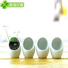 Ceramic Pots For Plants Ceramic Pots Garden Rough Finish Ceramic Flower Pots  Vintage Design Flower Pots . Ceramic Pots For Plants ...