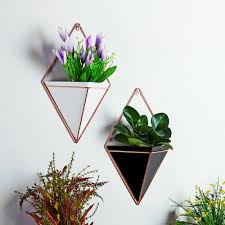 wall hanging green plant planter box