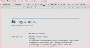 Google Resume Samples Resume Template Google Docs Luxury Google Docs Resume Templates 23