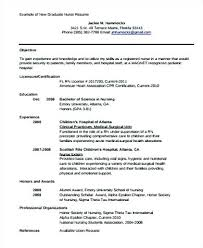 Resume Statements Examples Resume With Objectives Sample Nursing