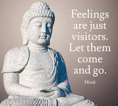 Buddha Quotes On Love Cool Buddhist Quotes Best Collection Of Buddha Quotes On Life