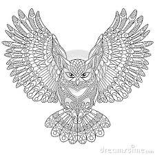 Kleurplaat Adelaar Kleurplaat Silhouette Adelaar Kleding Eagle