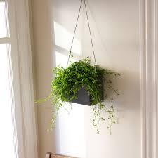 hängen™ wall planter  opus garten  touch of modern