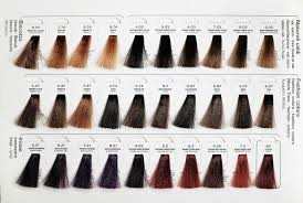 Elgon Hair Color Chartelgon Hair Color Best Hair Color 2017