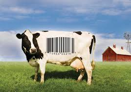 food inc movie essay food inc discussion guide org film essay  food inc discussion guide org
