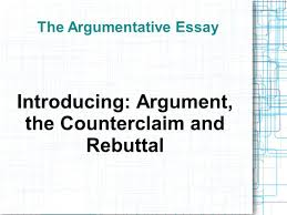 the argumentative essay ppt  the argumentative essay