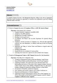 Career Objectives For Resume Examples Paid To Write Articles Or Paid To Copywrite Career Objective In 82