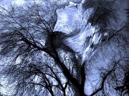 Resultado de imagen de aúlla el viento en la ventana