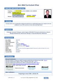 100 Resume For Network Engineer 100 Ccna Resume Sample