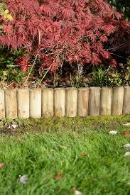 border section 15cm forest garden