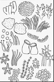 Best Of Coral Page To Color Design Printable Coloring Sheet