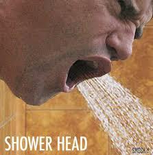 bathroom puns. Punday Bathroom Human Head Shower Puns H