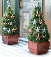 ingenious idea front door trees for tree decorations hanging potted