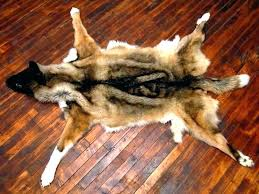 fake animal skin rugs bear hide rug polar bear carpet fake bear skin rug faux bear fake animal skin rugs