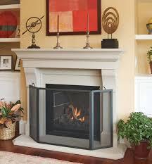 fireplace baby gate ideas