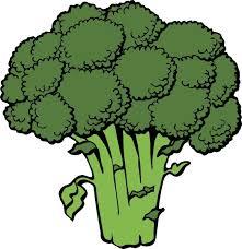 broccoli clipart. Simple Broccoli Broccoli Clip Art On Clipart All Free Download