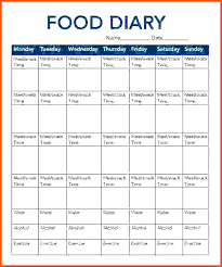 simple food log template receiving log template excel daily food example intake
