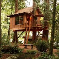 treehouse masters treehouses. Treehouse Masters Pete Nelson - Google Search Treehouses 2