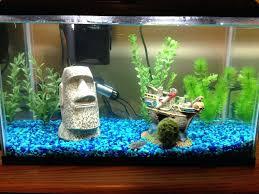betta fish tank ideas interior crazy creative decoration awesome betta fish tank ideas cute tanks decorating