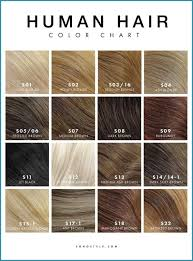 Guy Tang Color Chart 28 Albums Of Age Beautiful Permanent Hair Color Chart