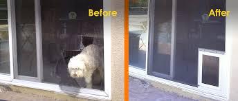 pet proof screens pet doors
