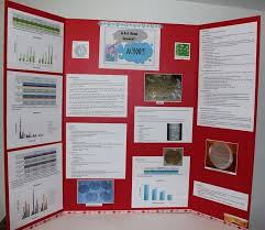 Poster Board Projects This Is A Display Of My Science Fair Board Tri