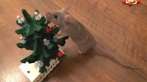 Mouse decorates the Christmas tree [Original] - YouTube