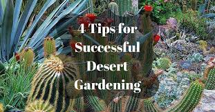 desert gardening. 4 Tips On How To Plant A Desert Garden Gardening R