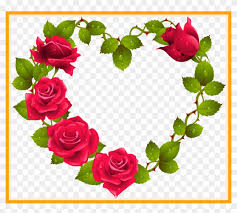 red rose bouquet red rose flower bouquet png the best heart shaped border designs