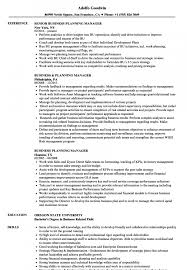 Bank Branch Manager Business Plan Planning Resume Sample 800x1153